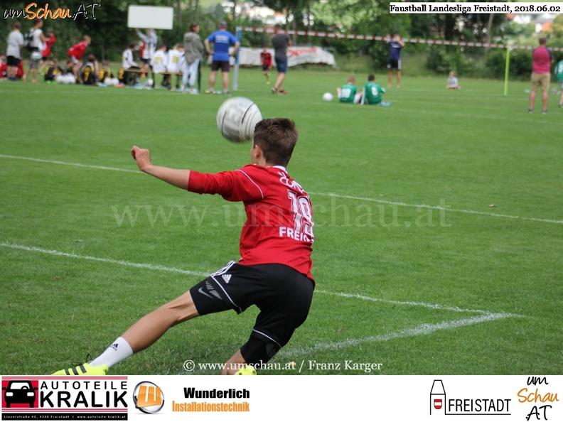Foto Spielszene Faustball Union Compact Freistadt 2 - Benjamin Voit