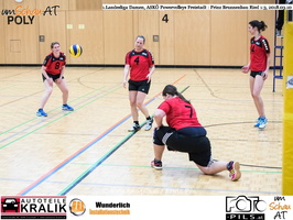180310-Powervolleys-Freistadt-EL3A9489