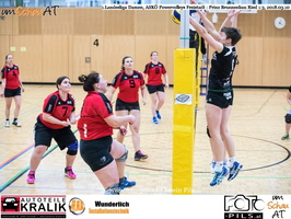180310-Powervolleys-Freistadt-EL3A9504