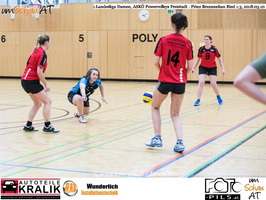180310-Powervolleys-Freistadt-EL3A9541