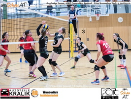 180310-Powervolleys-Freistadt-EL3A9547