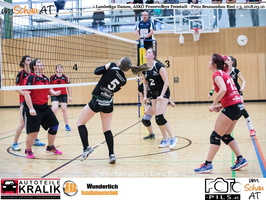 180310-Powervolleys-Freistadt-EL3A9549