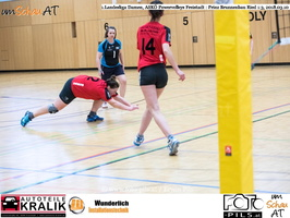 180310-Powervolleys-Freistadt-EL3A9554