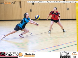 180310-Powervolleys-Freistadt-EL3A9556