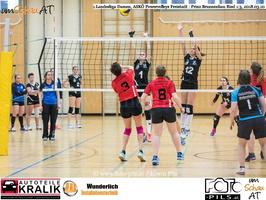 180310-Powervolleys-Freistadt-EL3A9679