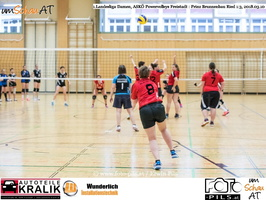 180310-Powervolleys-Freistadt-EL3A9681