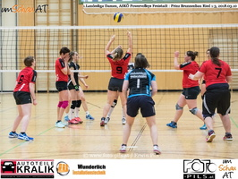 180310-Powervolleys-Freistadt-EL3A9686