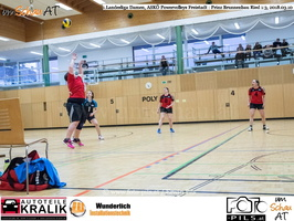 180310-Powervolleys-Freistadt-EL3A9765