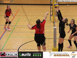 190112-Freistadt-Powervolleys-IMG 7969