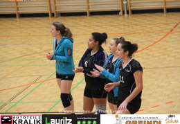 190112-Freistadt-Powervolleys-IMG 8024