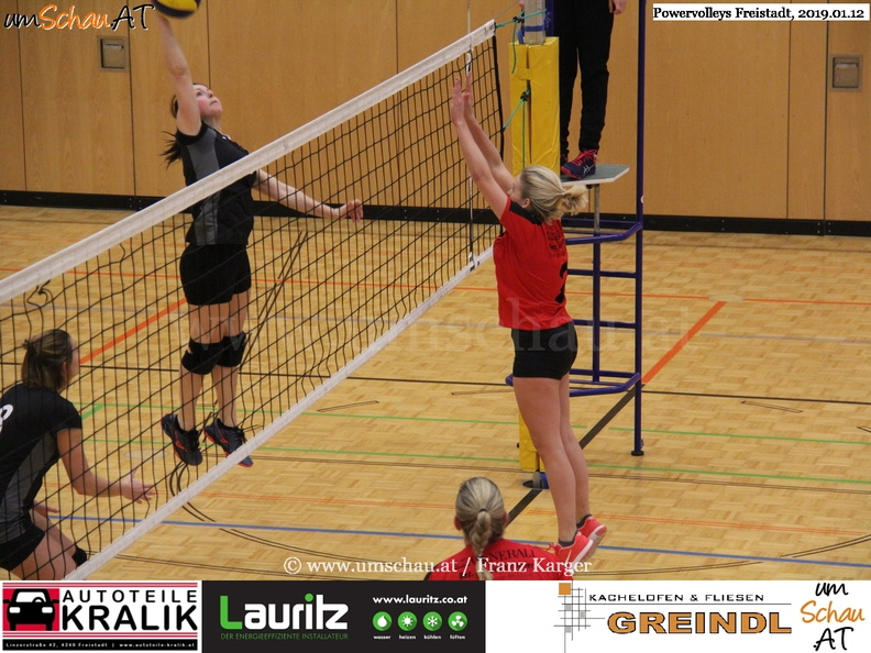 190112-Freistadt-Powervolleys-IMG_8088.jpg