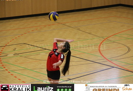 190112-Freistadt-Powervolleys-IMG 8163