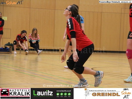 190112-Freistadt-Powervolleys-IMG 8247
