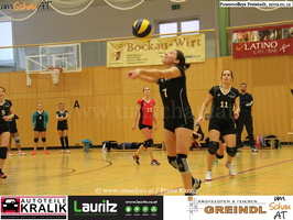 190112-Freistadt-Powervolleys-IMG 8288
